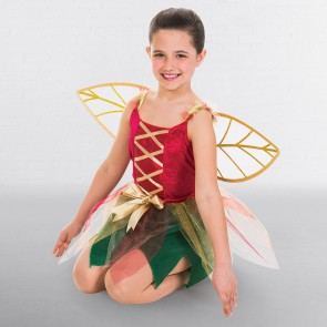 Child Fantasy Fairy Dress with Wings