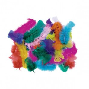 Box of Mixed Multi Coloured Feathers