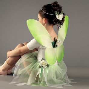 Fairy Set - Green (Childs)